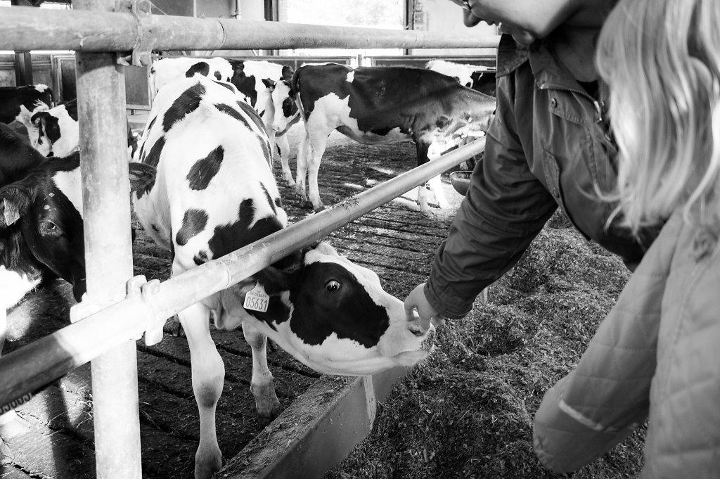 Åbent Landbrug 2015